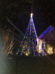 Christmas lights 1 cardinal touched up