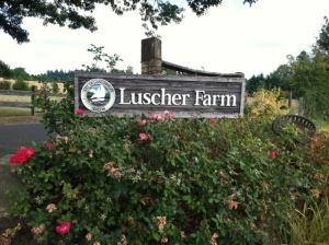 Luscher Farm sign