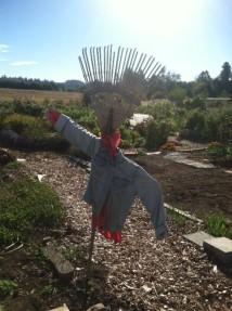 scarecrow 18 rake
