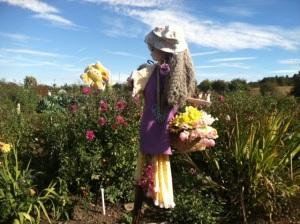 scarecrow 23 horizontal