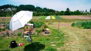 jackiemccartin_luscher-farm-painting