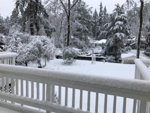 2017-snowstorm-1