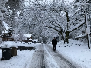 2017-snowstorm-6