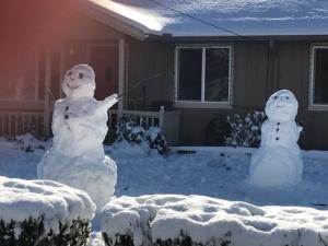 2017-snowstorm-8